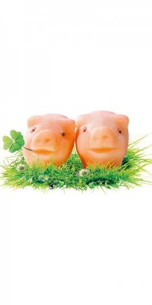 Niederegger Schweine